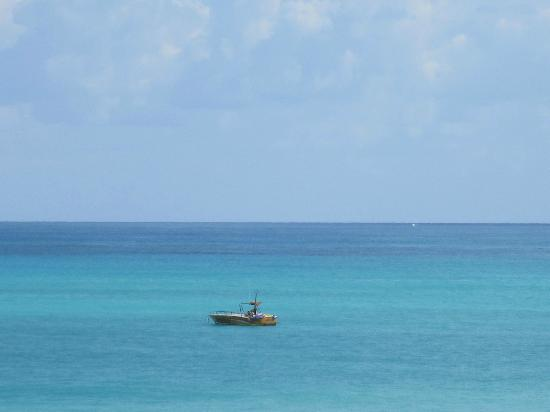 Iberostar Grand Hotel Paraiso: Dive boat heading in