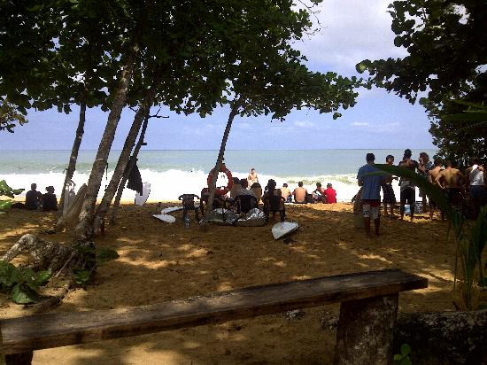Playa Bluff Lodge: Bluff beach surf season