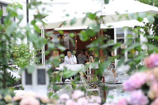 koselig restaurant oslo escort frogner
