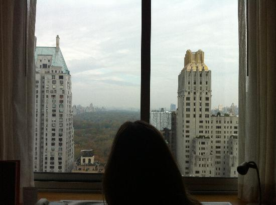 Le Parker Meridien New York: A room with a view