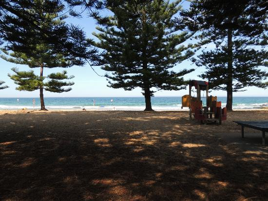 Whale Beach, Australia: View towards beach from car parking, where Whale was photographed from - excelent Nikon P510 zoo