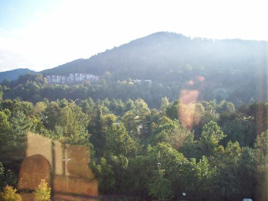 Homewood Suites by Hilton Asheville- Tunnel Road: View from Room (facing back of hotel)