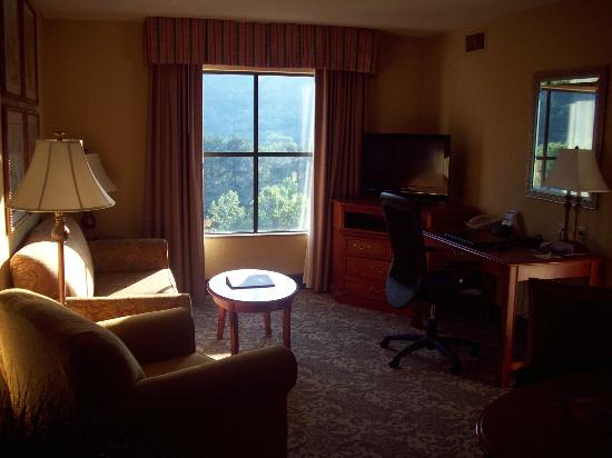 Homewood Suites by Hilton Asheville- Tunnel Road: Living area of King Suite