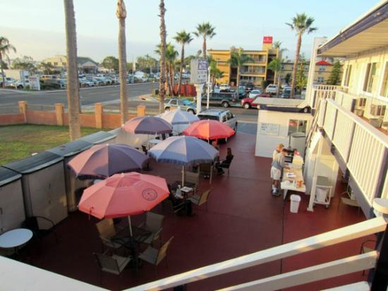 Dolphin Motel: outside dining terrace