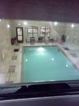 Homewood Suites by Hilton Asheville- Tunnel Road : Indoor Pool