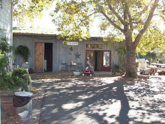 von Strasser and Lava Vine Winery: outside of the Lava Vine tasting room