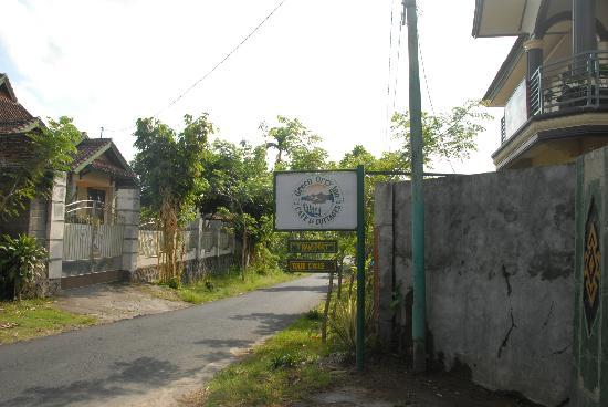 Green Orry Inn: Village road