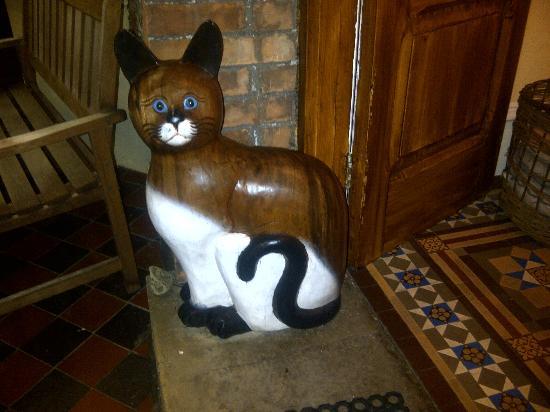 Lorna Doone House: I Love Cats!