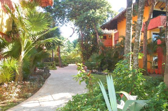 Iberostar Tucan Hotel: hotel