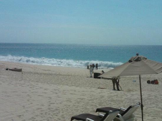 Marquis Los Cabos: la playa