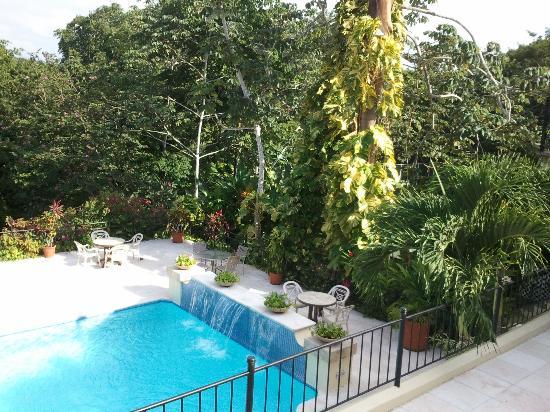 San Ignacio Resort Hotel: Pool