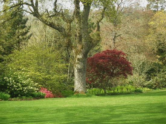 RHS Garden Rosemoor: beautiful parkland