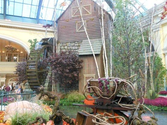 The Talking Tree Picture Of Conservatory Botanical Gardens At Bellagio Las Vegas Tripadvisor