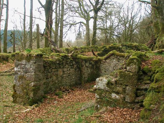 Fernworthy Reservoir: old ruined farm building