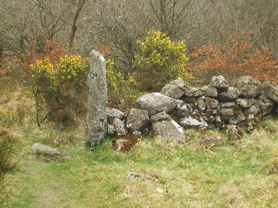 Fernworthy Reservoir: dry stone wall