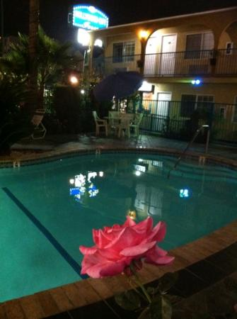 Hollywood City Inn: piscina