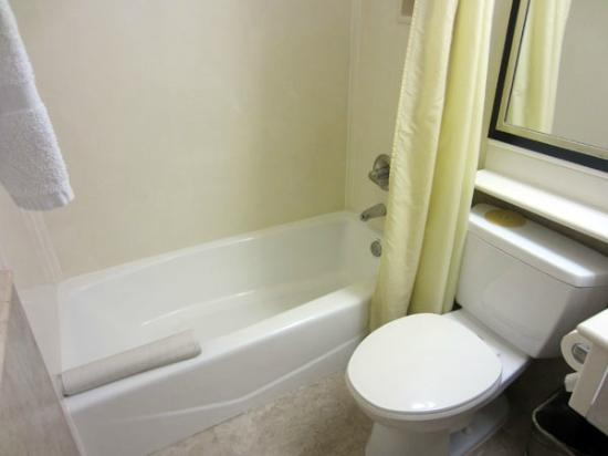 Anaheim Islander Inn and Suites: bathroom