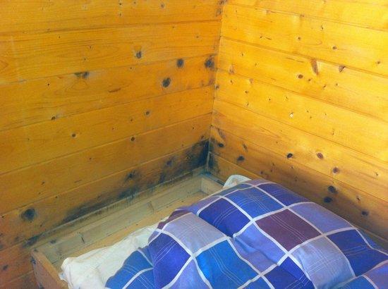 Camping Hostel Amsterdamse Bos: 3. Ecke