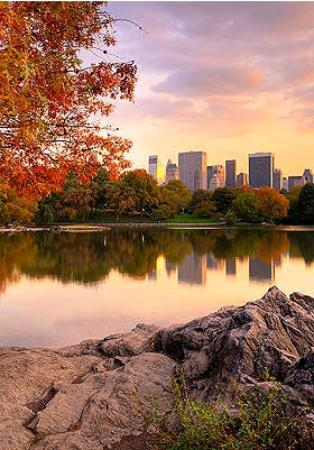 Central Park Sunset Tours