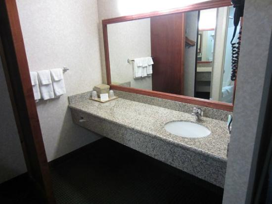 Comfort Inn Yosemite Area : large bathroom counter space