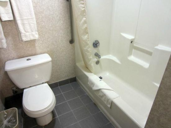 Comfort Inn Yosemite Area : Bathroom