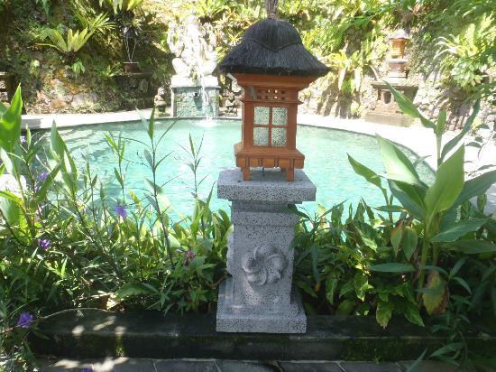 Villa Sarna Ubud: Pool Area