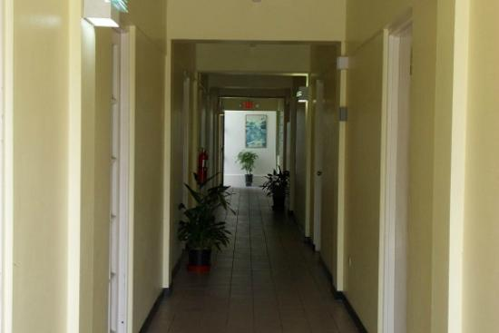 Pineapple Court Hotel: Hotel walkway