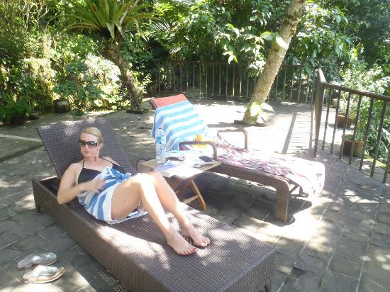 Villa Sarna Ubud: Pool