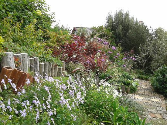 Lip na Cloiche Garden and Nursery: garden