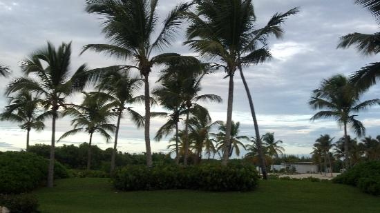 Sanctuary Cap Cana by AlSol: waiting for sunset