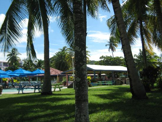 Jolly Beach Resort & Spa : Grounds and Bar