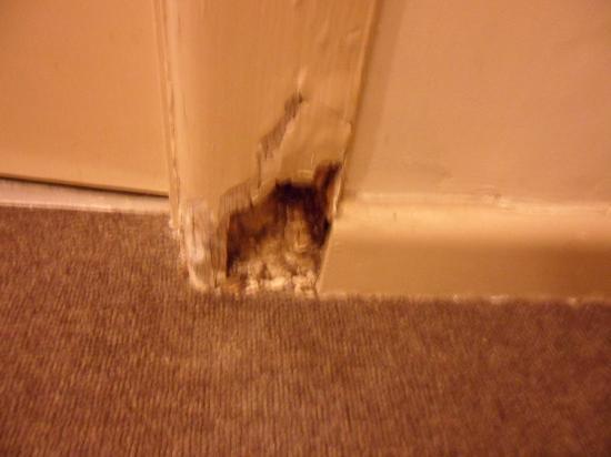 Meadow Inn Hotel : dry rot both sides of bathroom