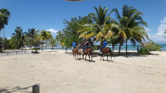 Half Moon: horse back riding