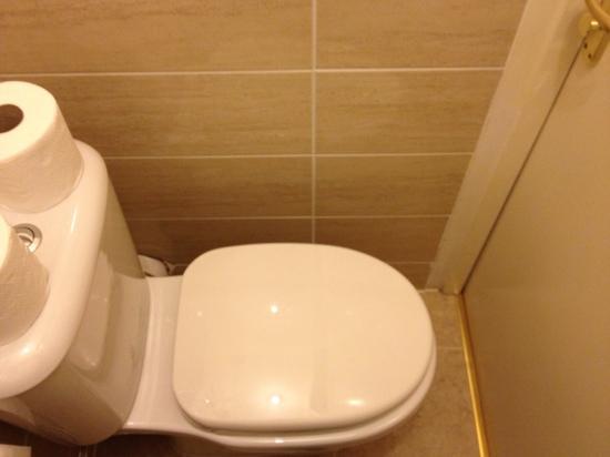 Pearl Hotel London : no space between loo and door!