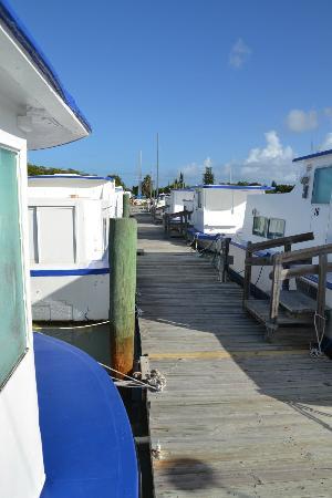 Sea Cove Motel and Marina 사진