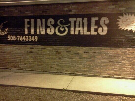 Fins and Tales: nice atmosphere