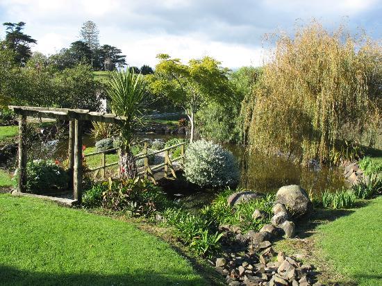 Matakohe House B&B Hotel: Gardens