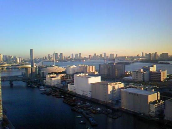 Dai-Ichi Hotel Tokyo Seafort: heyakara