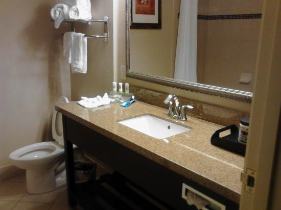 Country Inn & Suites By Carlson, Tampa Airport North: Bathroom