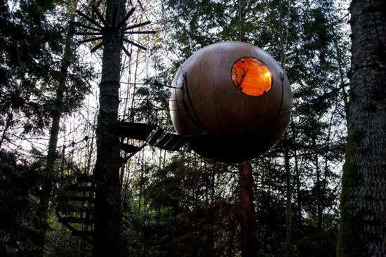 Free Spirit Spheres: Orb in a tree