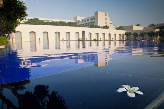 Trident, Gurgaon: Around the grounds