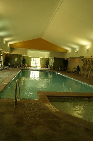 Marriott's Willow Ridge Lodge: The pool and hot tub were nice