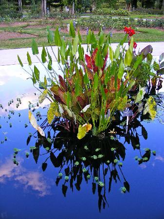 Burlington, Canadá: The reflecting pool