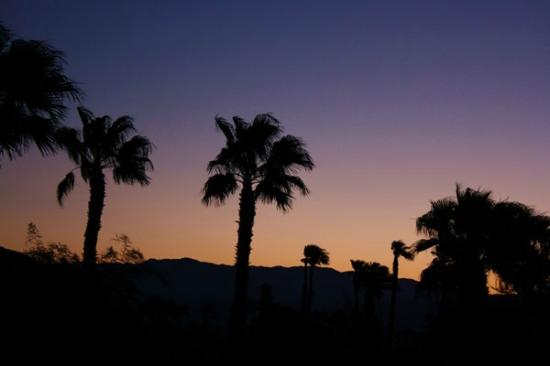 Residence Inn Palm Desert : Amazing sunrise from my balcony