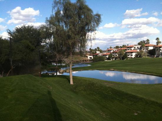 Arizona Grand Resort & Spa: Greenest golf course eve!