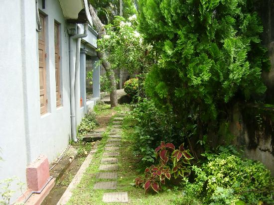 Chamenka Guest House : Garden parth