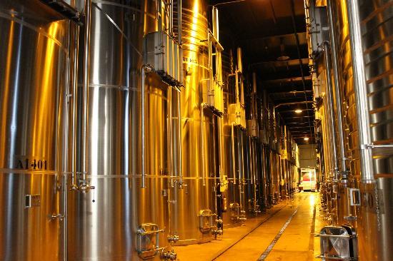 Tanques de fermentacion en VIñas del Vero