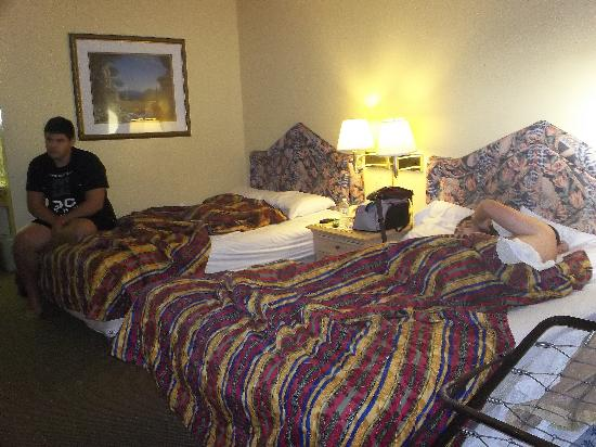 Orlando Continental Plaza Hotel Vista Hacia El Bano De La Habitacion
