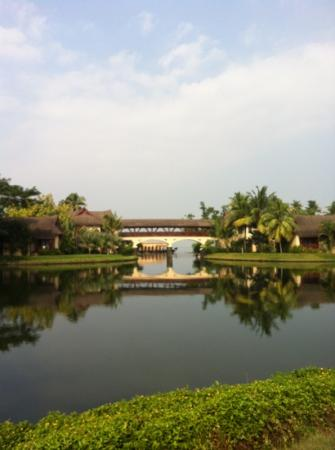 The Zuri Kumarakom: view frm the pool