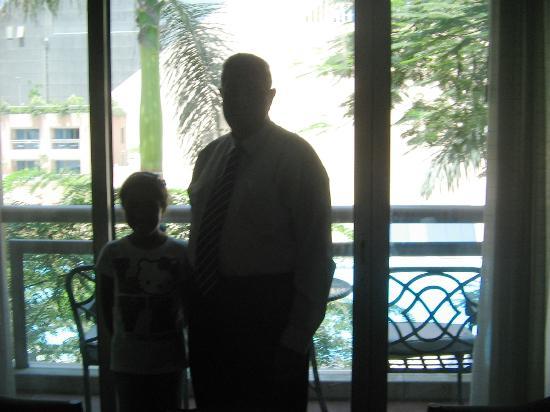 فندق انتركونتننتال كرستال: From the room